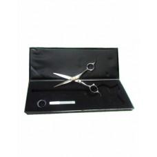 5.5 Detail scissor